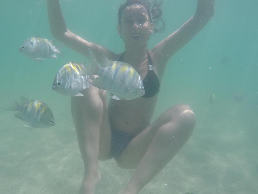 Bia tibeiro submersa no mar em Boipeba em uma de suas viagenes